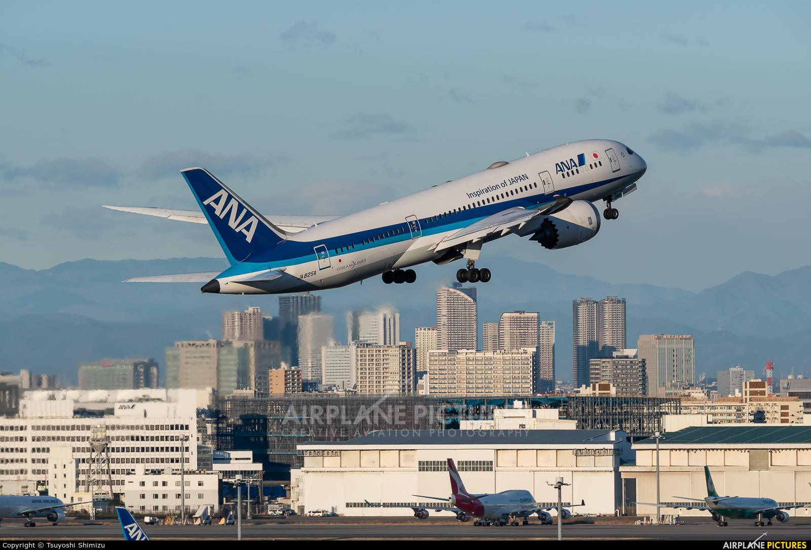 ANA - All Nippon Airways JA825A aircraft at Tokyo - Haneda Intl
