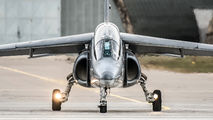 AT17 - Belgium - Air Force Dassault - Dornier Alpha Jet 1B aircraft