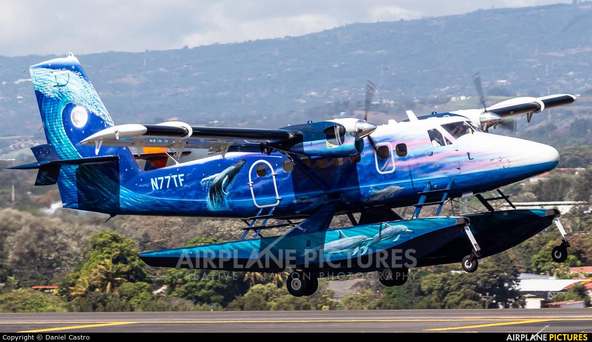 Private N77TF aircraft at San Jose - Juan Santamaría Intl