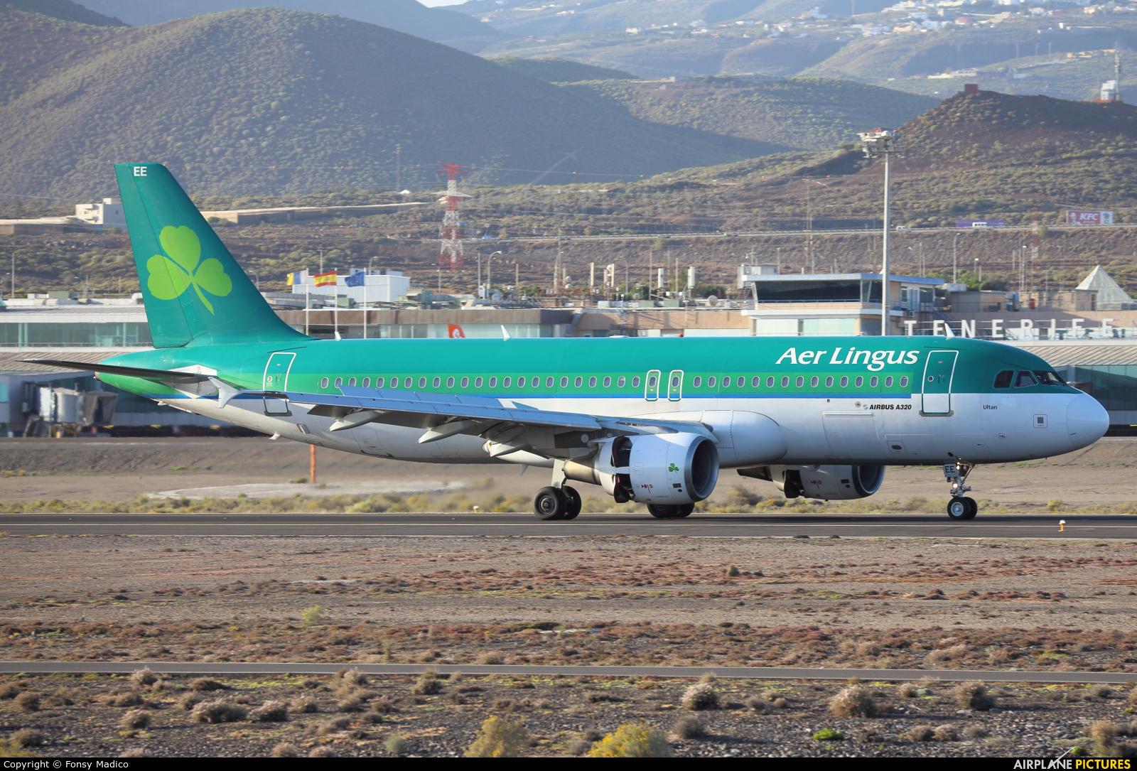 Aer Lingus EI-DEE aircraft at Tenerife Sur - Reina Sofia