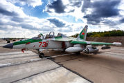 73 - Belarus - Air Force Yakovlev Yak-130 aircraft