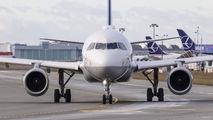 D-AILA - Lufthansa Airbus A319 aircraft