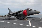 MM7222 - Italy - Navy McDonnell Douglas AV-8B Harrier II aircraft