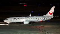 JAL - Japan Airlines JA344J image