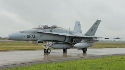 CE.15-10 - Spain - Air Force McDonnell Douglas EF-18B Hornet