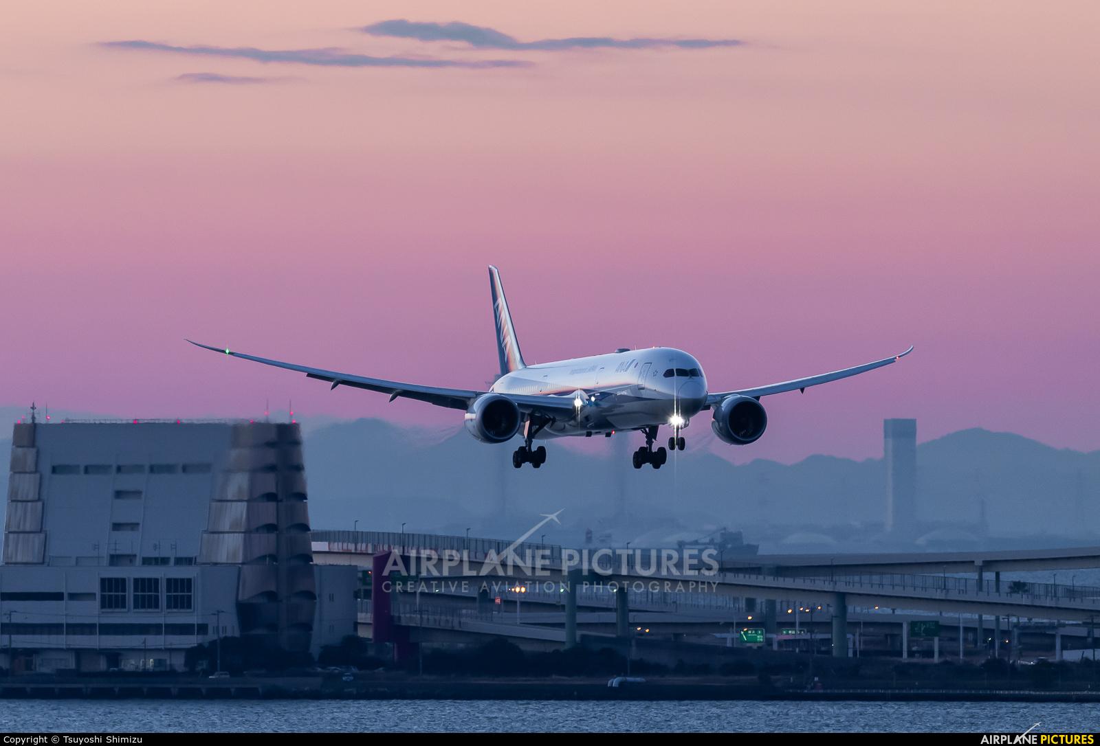 ANA - All Nippon Airways JA894A aircraft at Tokyo - Haneda Intl