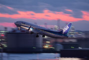 JA60AN - ANA - All Nippon Airways Boeing 737-800 aircraft