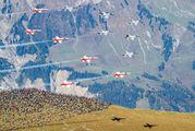 - - Switzerland - Air Force:  Patrouille de Suisse Northrop F-5E Tiger II aircraft