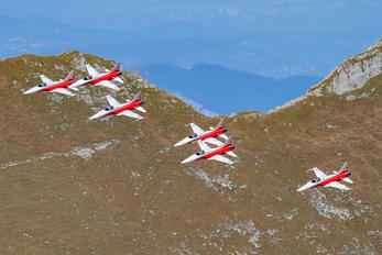 - - Switzerland - Air Force:  Patrouille de Suisse Northrop F-5E Tiger II