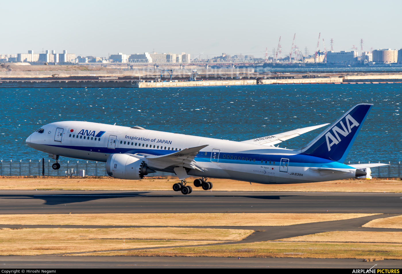 ANA - All Nippon Airways JA838A aircraft at Tokyo - Haneda Intl
