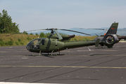 12634 - Montenegro - Air Force Aerospatiale SA-341 / 342 Gazelle (all models) aircraft