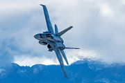 J-5004 - Switzerland - Air Force McDonnell Douglas F/A-18C Hornet aircraft