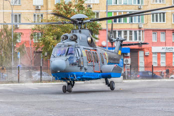10 YELLOW - Ukraine - National Guard Airbus Helicopters EC225LP Super Puma Mk2+