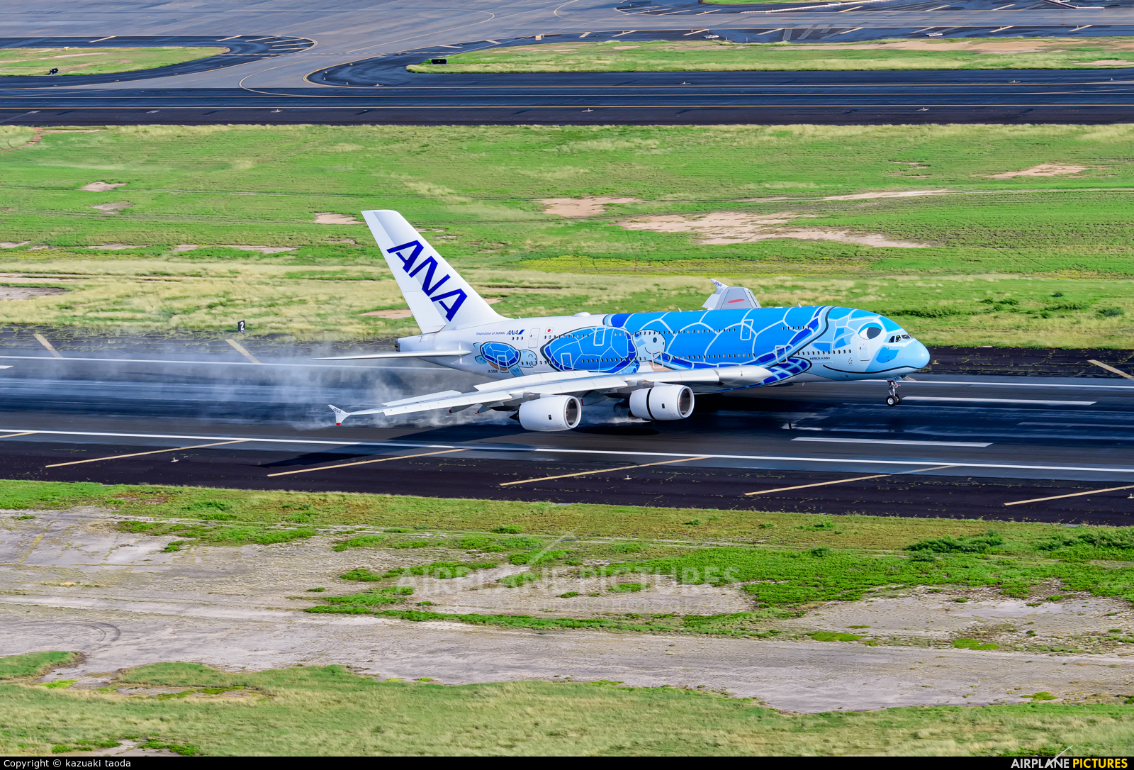 ANA - All Nippon Airways JA381A aircraft at Honolulu Intl