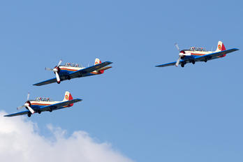 40 - Romania - Air Force Yakovlev Yak-52