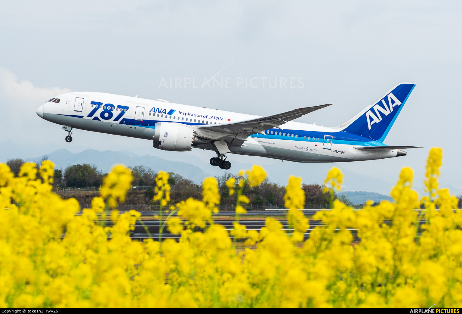 ANA - All Nippon Airways JA816A aircraft at Takamatsu