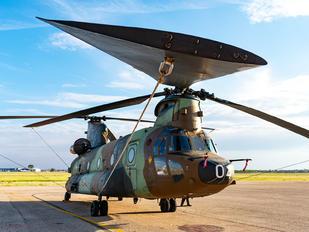 HT.17-04 - Spain - Air Force Boeing CH-47SD Chinook
