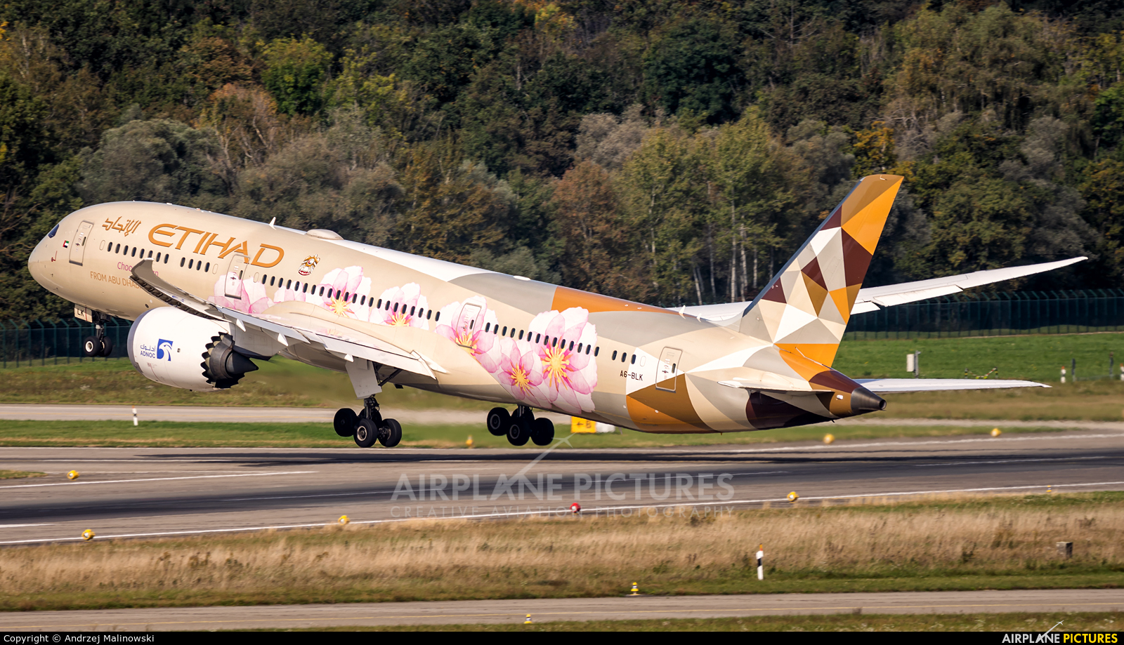 Etihad Airways A6-BLK aircraft at Zurich