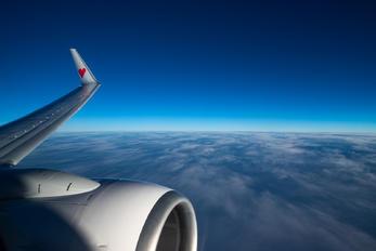 - - Skymark Airlines Boeing 737-800