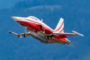 J-3080 - Switzerland - Air Force Northrop F-5E Tiger II aircraft