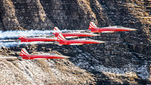 J-3090 - Switzerland - Air Force:  Patrouille de Suisse Northrop F-5E Tiger II aircraft