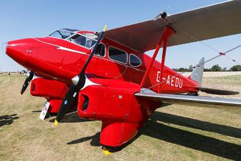 G-AEDU - Private de Havilland DH. 90 Dragonfly