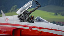 J-3085 - Switzerland - Air Force:  Patrouille de Suisse Northrop F-5E Tiger II aircraft