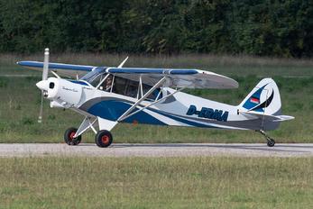 D-ERMA - Private Piper PA-18 Super Cub