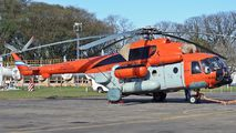 H-95 - Argentina - Air Force Mil Mi-171 aircraft
