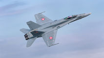J-5005 - Switzerland - Air Force McDonnell Douglas F/A-18C Hornet aircraft