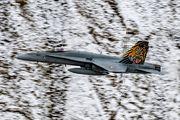 J-5011 - Switzerland - Air Force McDonnell Douglas F/A-18C Hornet aircraft