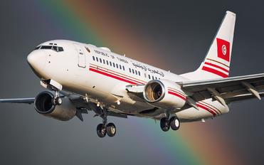 TS-IOO - Tunisia - Government Boeing 737-700 BBJ