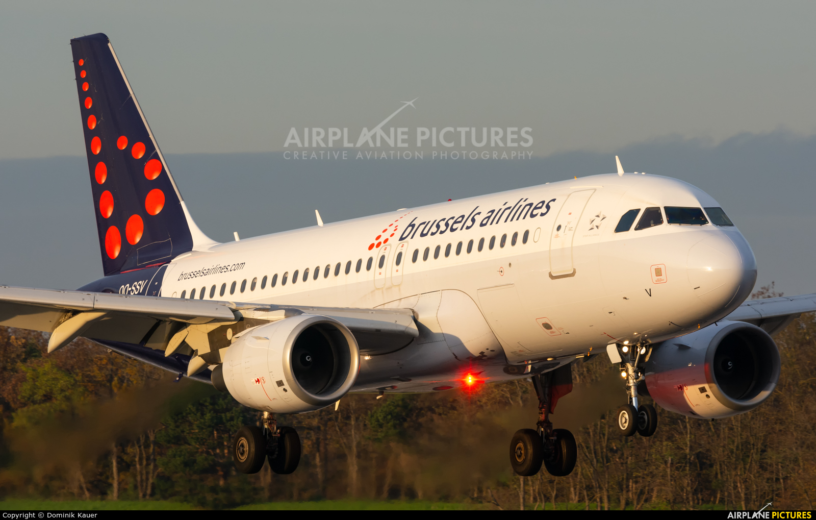 Brussels Airlines OO-SSV aircraft at Basel - Mulhouse- Euro