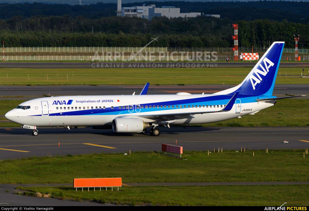 ANA - All Nippon Airways JA66AN aircraft at New Chitose