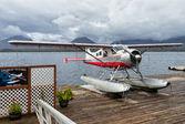 #2 Island Wings de Havilland Canada DHC-2 Beaver N1117F taken by Jetzguy
