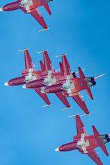 J-3088 - Switzerland - Air Force: Patrouille Suisse Northrop F-5E Tiger II