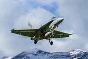 J-5006 - Switzerland - Air Force McDonnell Douglas F/A-18A Hornet aircraft