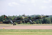Sweden - Air Force 37102 image