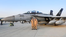 168493 - USA - Navy McDonnell Douglas F/A-18F Super Hornet aircraft