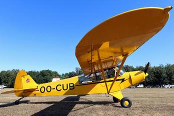 OO-CUB -  Piper L-21B Super Cub