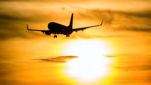 TC-SUY - SunExpress Boeing 737-800 aircraft