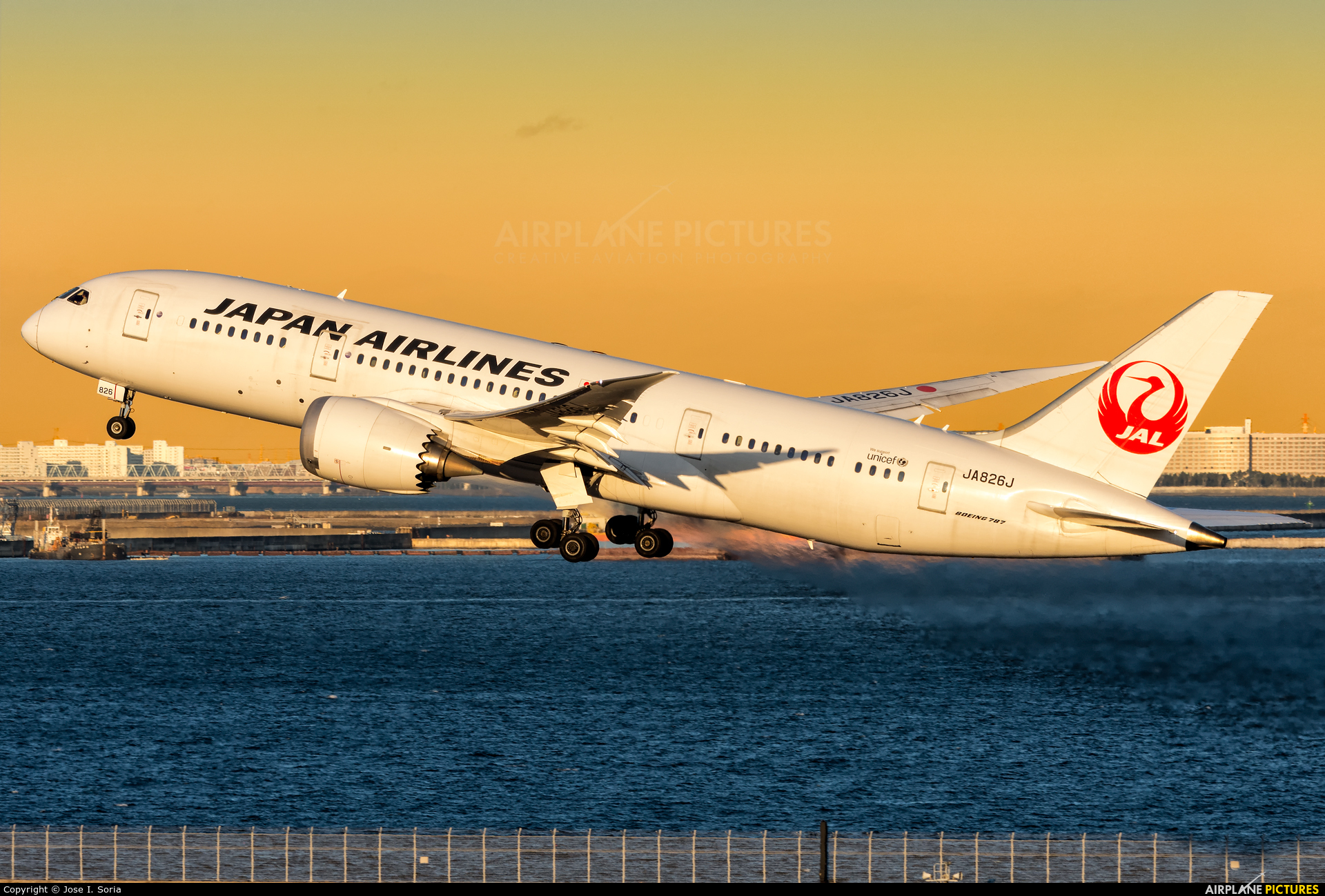 JAL - Japan Airlines JA826J aircraft at Tokyo - Haneda Intl