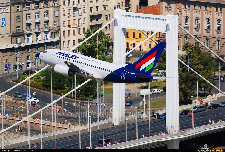 Malev HA-LON aircraft at Off Airport - Hungary