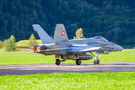 Switzerland - Air Force McDonnell Douglas F/A-18C Hornet J-5004 at Meiringen airport