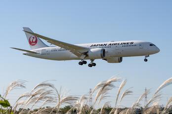 JA846J - JAL - Japan Airlines Boeing 787-8 Dreamliner