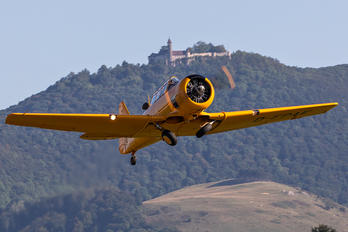 D-FPAE - Private North American T-6D Texan