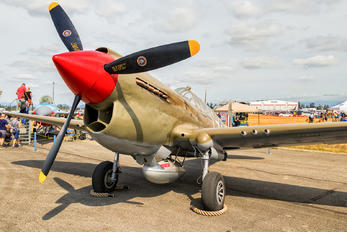 NX940AK - Private Curtiss P-40E Warhawk