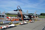 Poland - Air Force 38 image