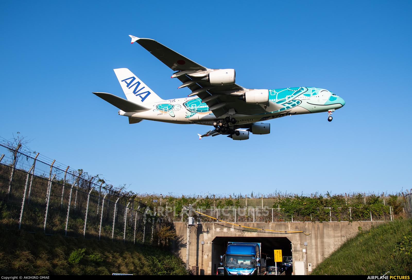 ANA - All Nippon Airways JA382A aircraft at Tokyo - Narita Intl
