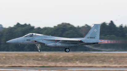 12-8803 - Japan - Air Self Defence Force Mitsubishi F-15J